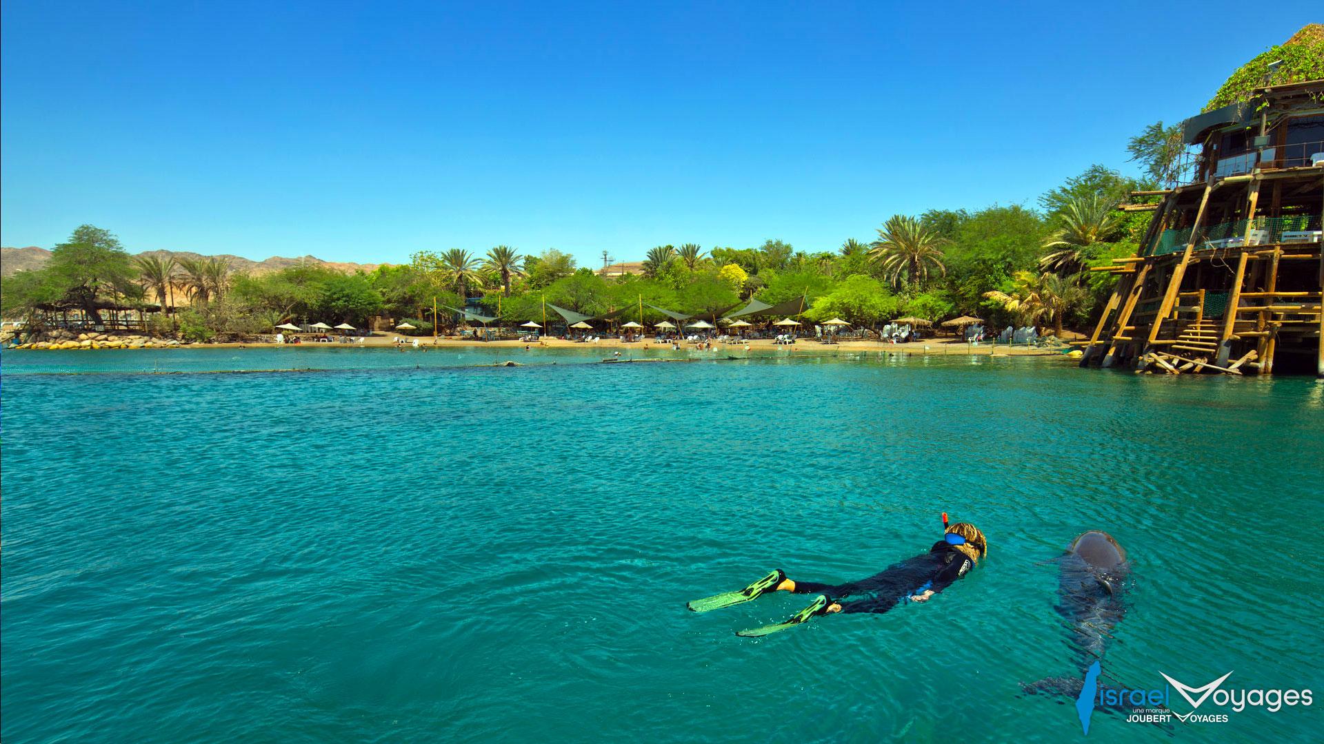 Plongée et snorkeling à Eilat