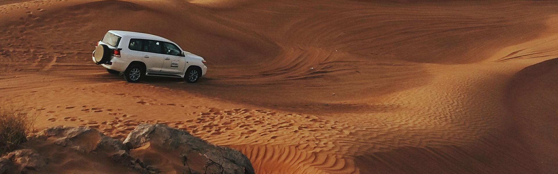 Tour en Jeep dans le désert de Judée
