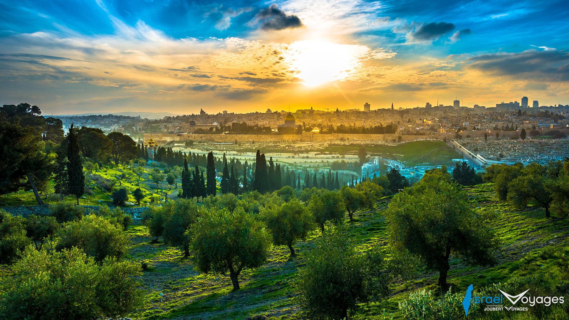 Mont des Oliviers à Jérusalem